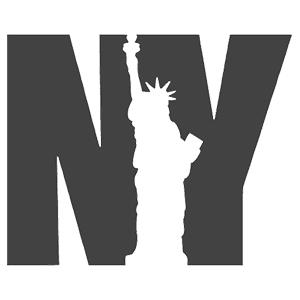 nyspins-logo