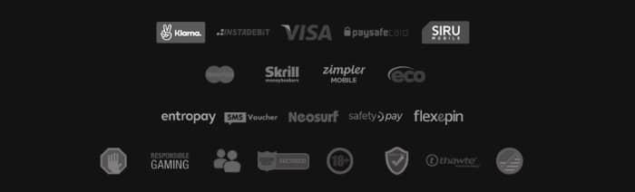 videoslotscasino_test_payment